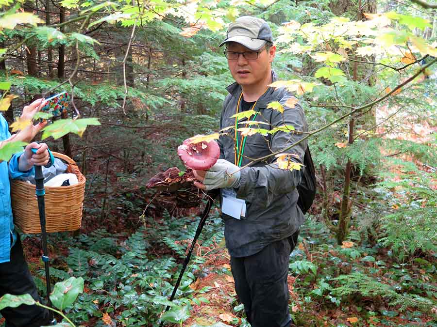 Mushroom hunting success! Tour-goer with a shrimp mushroom