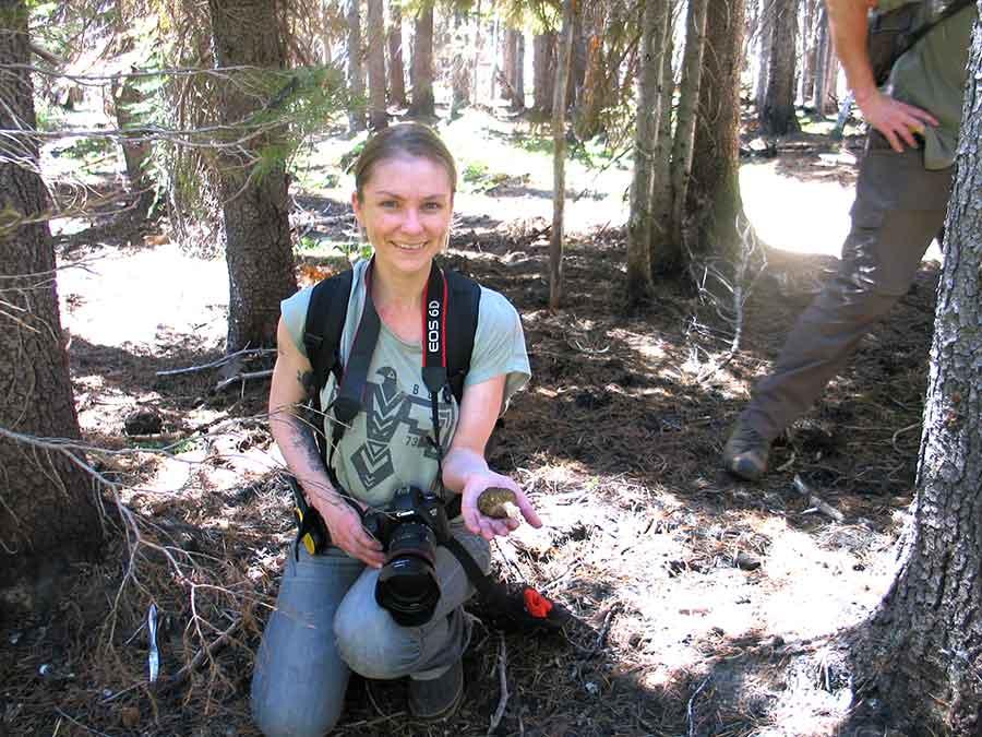 Mushroom Hunting Success — Morel Mushroom