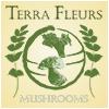 Terra Fleurs – Guided Mushroom Hunting Tours Logo