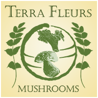 Terra Fleurs – Guided Mushroom Hunting Tours Retina Logo