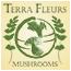 Terra Fleurs – Guided Mushroom Hunting Tours Mobile Logo