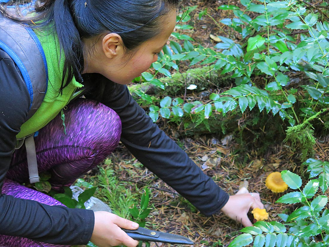 Mushroom hunting success! Tour-goers with chantarelle mushrooms